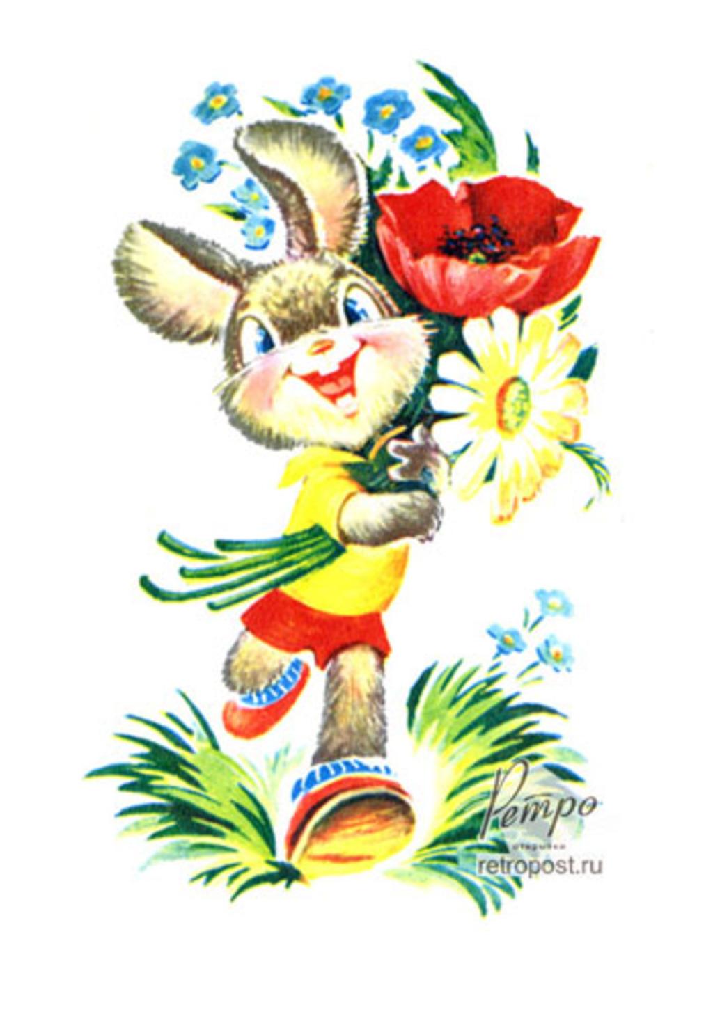 Заяц с цветком картинки 4